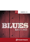 blues_NEW