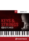 Keys&Strings_MIDI_box