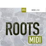 29Roots_MIDI_sc